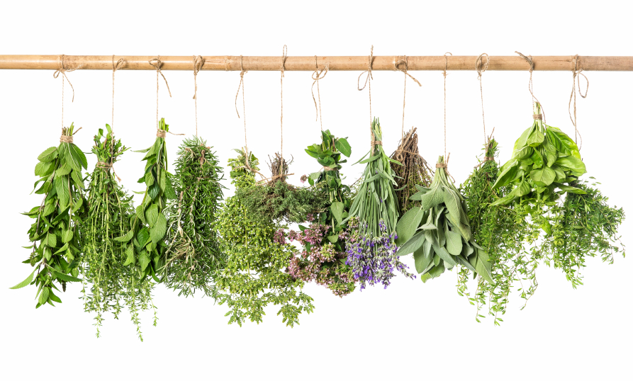The 7 Best Herbal Remedies for Recovering Alcoholics